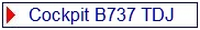 BLADLABEL Cockpit B737TD