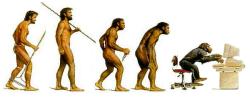 evolution 555 small