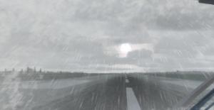 IMG P3D SnowDrops